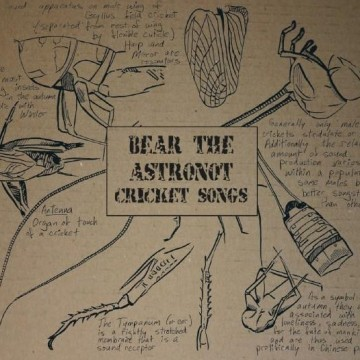 Lyrics Archives - Bear the Astronot and Turntable Kachina
